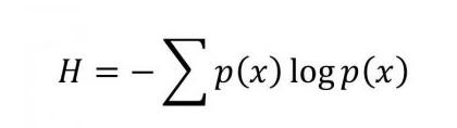 Shannon's Entropy Formula